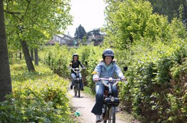 e-solex, mopeds and/or tandem adventure